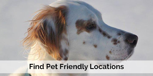 Pets Welcome - Pet Friendly Locations